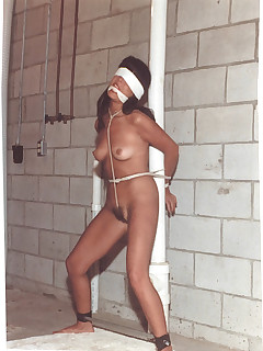 Nipple chained bitches ready and waiting
